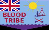 Scaled - BT Flag